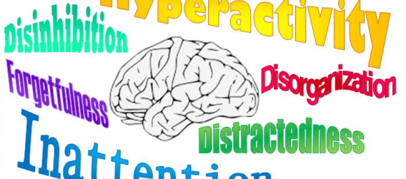 ADHD în familii